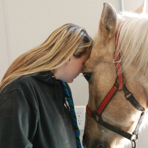 Courtney Bollman brought her horse Flash to Middle Granville to have him treated by Granville Large Animal.