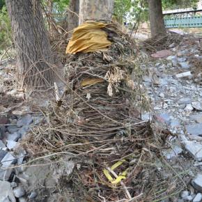 flood debris wrap web