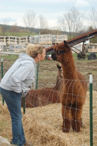 Ryder Road Farm on Fiber Tour this weekend