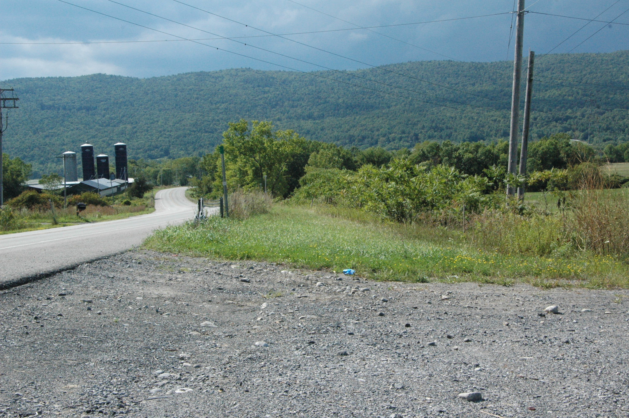 Village asks firm to study power line