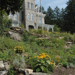 Skene Manor Garden (4)