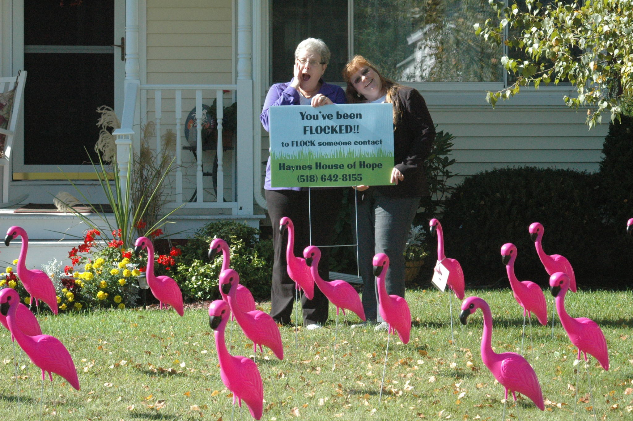 Flamingos fundraiser for Haynes House