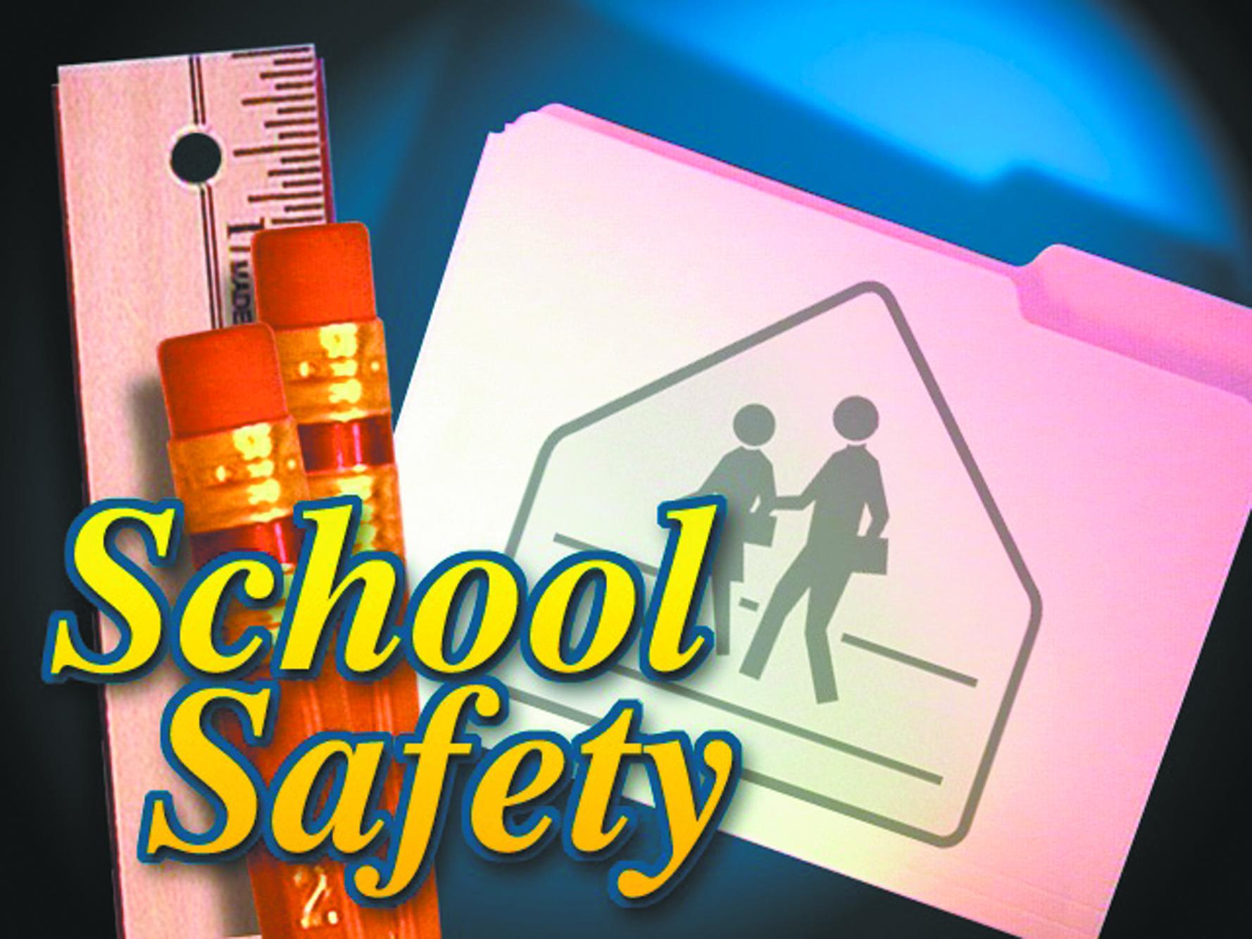 Schools examine security