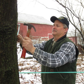 Jeff Cornell taps a tree earlier this week at his farm in Hartford.