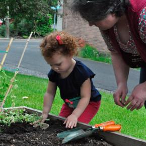 kindergartner-gardening-008