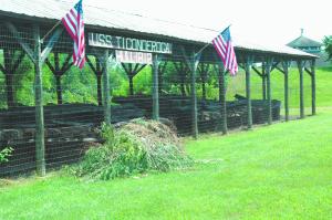 USS Ticonderoga weedy no more