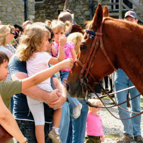 Heritage,-Harvest-and-Horse-Festival