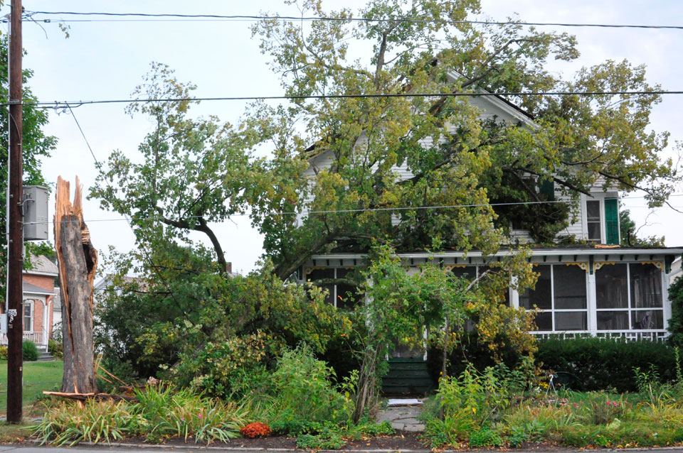 Storm causes widespread damage, power outages