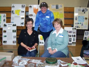 History fair Saturday in Granville