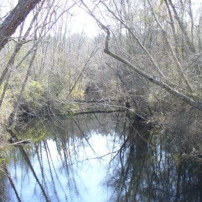 Moccassin Creek for civil war article