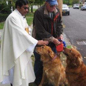 Father Joe Arockiasamy has blessed local animals at St. Mary's for the past seven years.