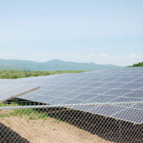 Whitehall Millett Solar Farm