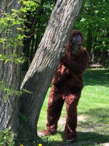 Inaugural Sasquatch half-marathon Saturday