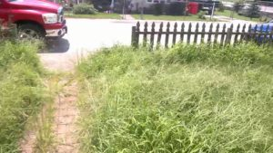 Village to charge resident $445+ for mowing lawn