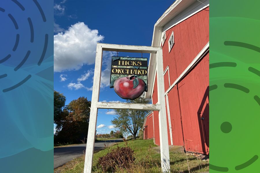 'Apple a day' challenge set by Hicks Orchard